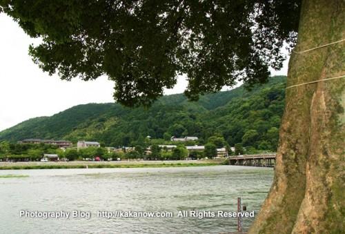 Arashiyama is a district on the western outskirts of Kyoto, Japan. Photo by kaka. http://kakanow.com