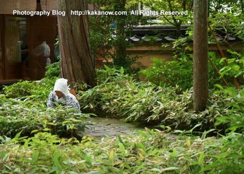 A worker working in Kinkakuji garden. Japan, Kyoto, Kinkaku-ji Temple, summer vacation. Photo by KaKa.