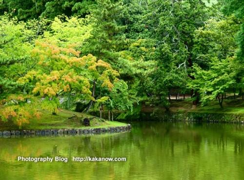 Gardens in Todaiji Temple, Nara, Japan. Photo by KaKa