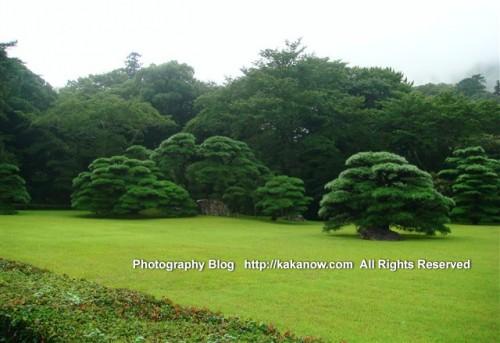 Japan Ise Jingu. Photo by KaKa.