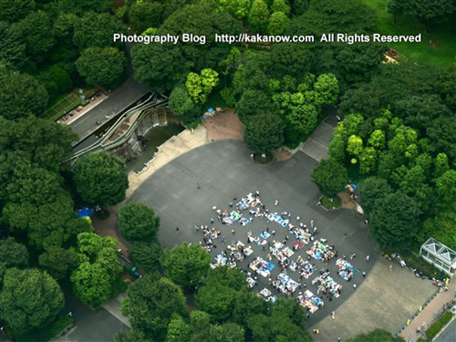 A flea market in Tokyo. Japan Tour, Tokyo Panorama. Photo by KaKa.