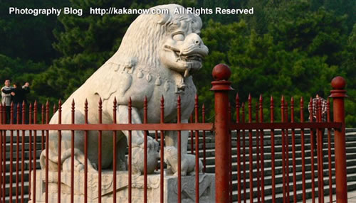 A stone lion in Yiheyuan(the summer palace), Beijing, China. Photo by kaka.