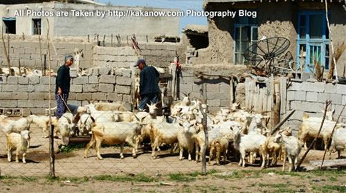 China travel, Inner Mongolia, Horqin Prairie, adobe village. Photo by KaKa.