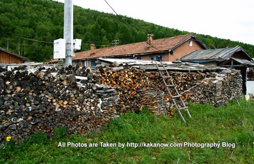 China travel, Inner Mongolia, Hing'an, Aer Mountain. Firewood of household use. Photo by KaKa.