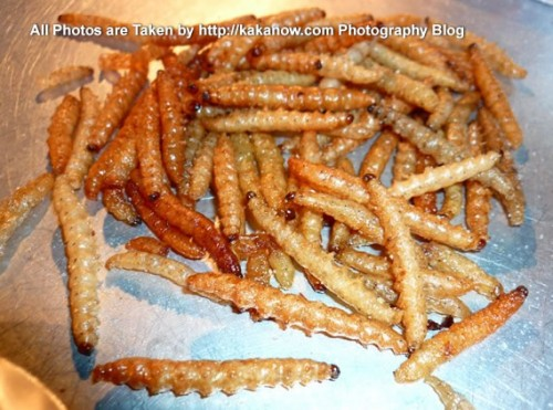 Thailand travel, Bangkok, local snack, fried worms. Photo by KaKa.