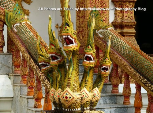 Thailand travel, Chiang Mai, the five heads snake in front of the temple gate. Photo by KaKa.